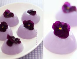 Lavender Lemonade Jello by theresahelmer
