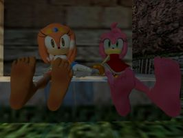 Amy And Tikal's Soles by VG-MC