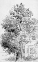 Tree and House by hank1