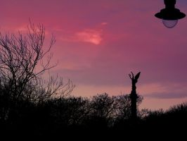 strawberry skies by seatonsluice