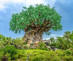 Tree of Life Panorama by Earth-Divine