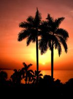 Jamaican Sunset by Riva