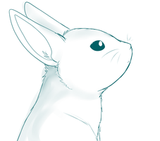 Bunny Sketch by SquidPup
