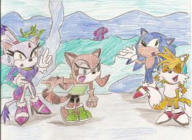 Scene from Sonic Rush Adv. by BlackCarrot1129