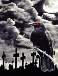 crow at night by AgaNecro