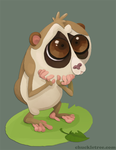 Slow Loris by WonderDookie