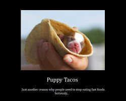 Puppy Tacos by SquishyPandaPower
