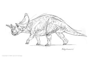 Pachyrhinosaur lineart by Red-Dilopho