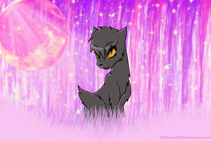 The Beauty of StarClan by YellowfangOfStarclan