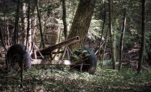 Parts of an Old transport cart by MattHalic