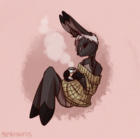 cozy by chrysantheb0mb