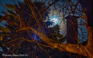 The full moon. Hungary.16.11.2013. HDR. by magyarilaszlo