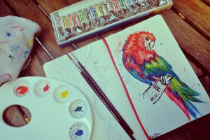 Macaw by manupaivaellon