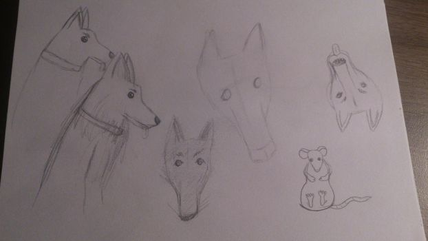 Doodle #18 - More Dog sketches by ZombieGarou
