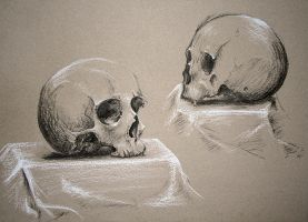 skull by silver-spurs