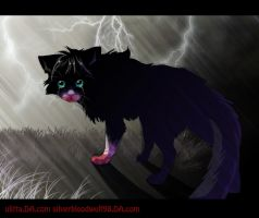 lost :.collab.: by Silverbloodwolf98