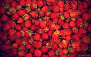 Fragaria moschata by AiK-art