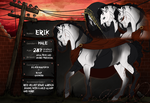 Erik - Infected by Elemes
