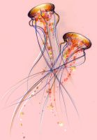 Jellyfish by iv0rine
