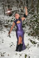 Samurai and Snow by LatexModel