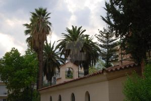 The House Surrounded by Palms by Mcnicky