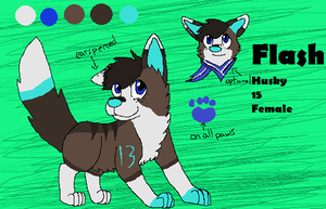 Flash refrence sheet by Radioactive-Flash