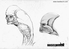 Haselwurm sketches III by dcf