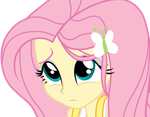 Fluttershy - Equestria Girls by AndreaSemiramis