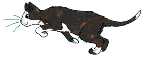 ThunderClan - Dappletail by WildpathOfShadowClan