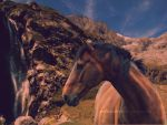 Horse in the mountain by ArelloCookies