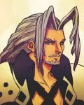 Sephiroth With a Man Beard by Vestergaard