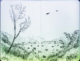 birds over the field by elenazhe