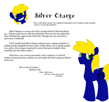 Silver Charge Tumblr Bio by Silver-Charge
