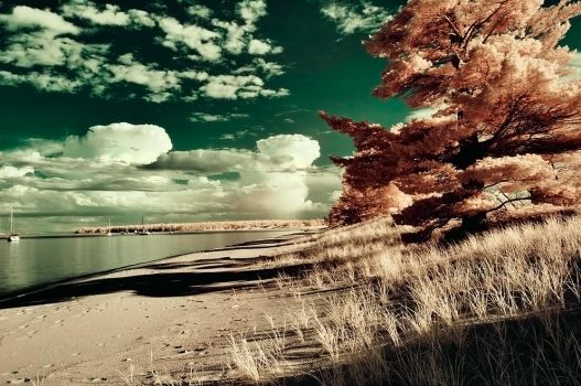 julian bay infrared by BrianWolfe