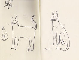 cats by wolfship