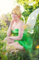 Tinker Bell II by EnchantedCupcake