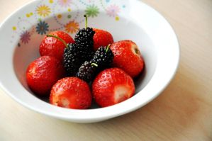 strawberry and black mulberry by Bartowski96