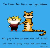 Calvin and Hobbes by sebreg