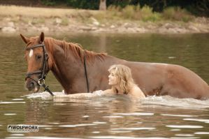 Swim with horses 4 by wolfworx