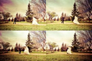 Wedding Series 09 by isoott