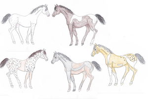 Augustus Warmblood Adoptables by jackiehorse