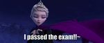 I passed the exam!! by LoveEmerald