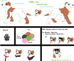 Billie Joe REF by BadKittyTigerstar
