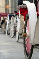 Horse Carriages by alextakesphotos