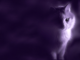 Mystical Cat Wallpaper by C-n-DWallpapers