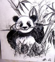 my hungry panda by impalabee