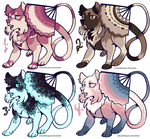 Fantailed dog adopts by FourDirtyPaws