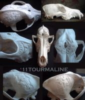 Coyote skull: relief carvings by tourmaline-83