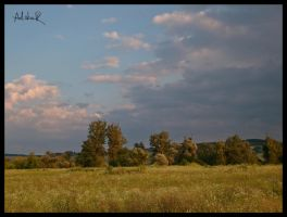 over the golden lands by ad-shor