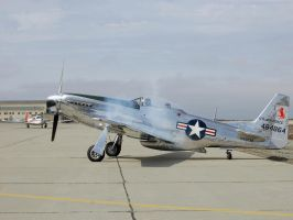 P51 Mustang cranking up smoke by Partywave